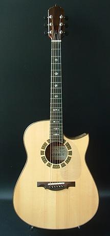 Mod-D Guitar